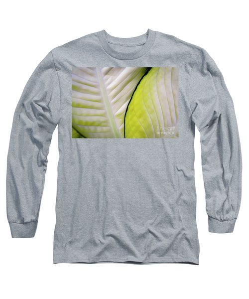 Leaves In White Long Sleeve T-Shirt