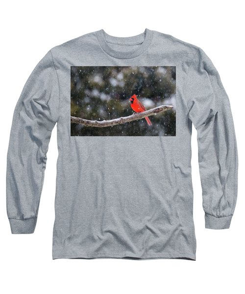 Long Sleeve T-Shirt featuring the photograph Let It Snow by Mircea Costina Photography