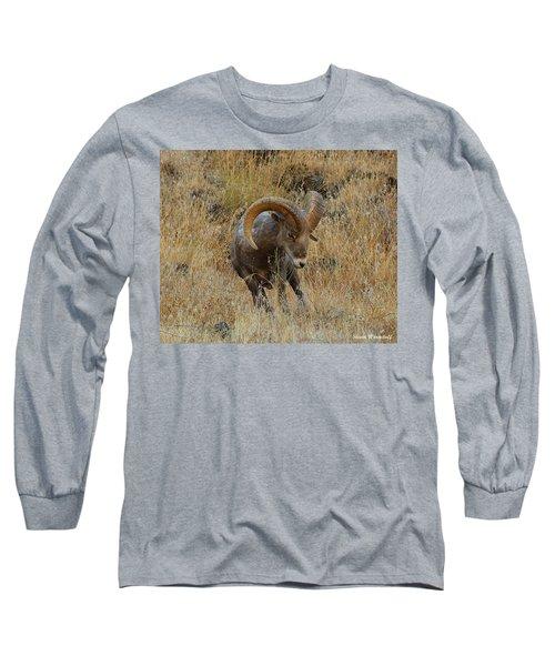 Let's Go II Long Sleeve T-Shirt