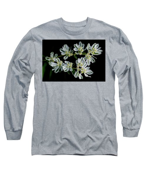 Lights In The Darkness Long Sleeve T-Shirt