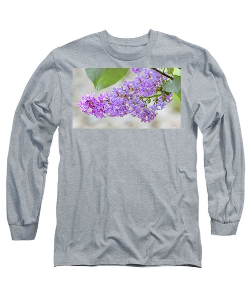 Long Sleeve T-Shirt featuring the photograph Lilac Cluster by Skip Tribby