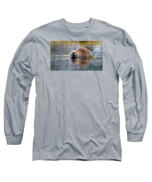 Lily Lake Beaver Long Sleeve T-Shirt