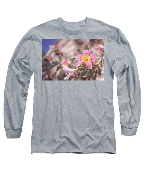 Long Sleeve T-Shirt featuring the photograph Lily Tree. Flowers Of Malaga by Jenny Rainbow