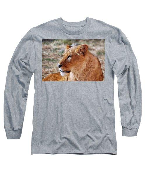 Lion Around Long Sleeve T-Shirt