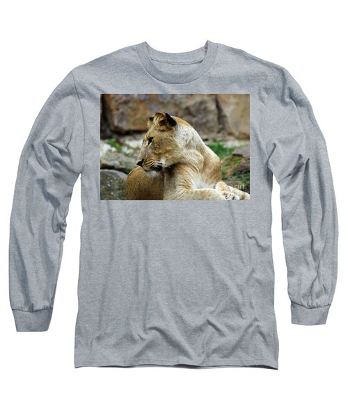 Lioness Long Sleeve T-Shirt by Inspirational Photo Creations Audrey Woods