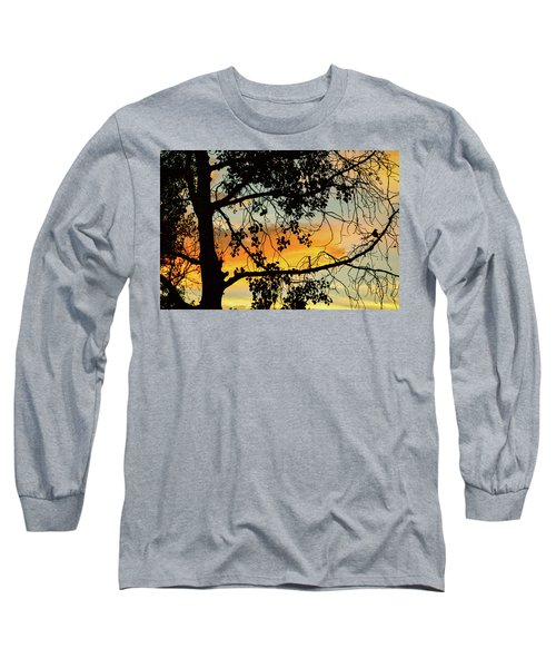 Long Sleeve T-Shirt featuring the photograph Little Birdie Told Me So by James BO Insogna