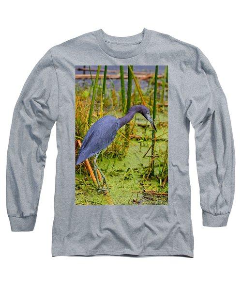Little Blue Heron Feeding Long Sleeve T-Shirt
