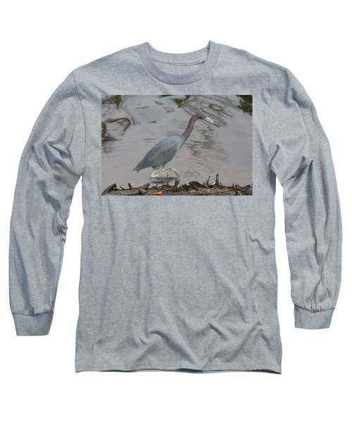 Long Sleeve T-Shirt featuring the photograph Little Blue Heron Walking by Christiane Schulze Art And Photography