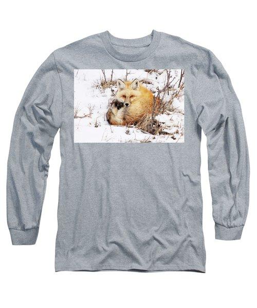 Little Red Fox Long Sleeve T-Shirt