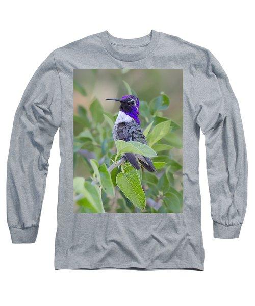 Little Treasure Long Sleeve T-Shirt