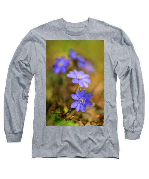 Long Sleeve T-Shirt featuring the photograph Liverworts In The Afternoon Sunlight by Jaroslaw Blaminsky