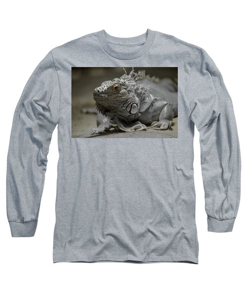 Liz Long Sleeve T-Shirt