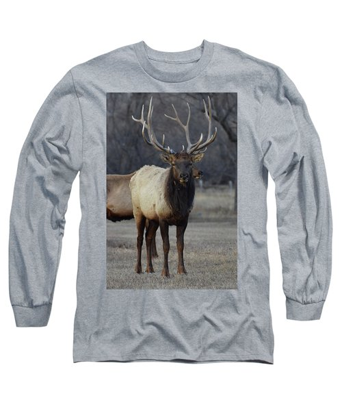 Long Sleeve T-Shirt featuring the photograph Lone Bull by Billie Colson