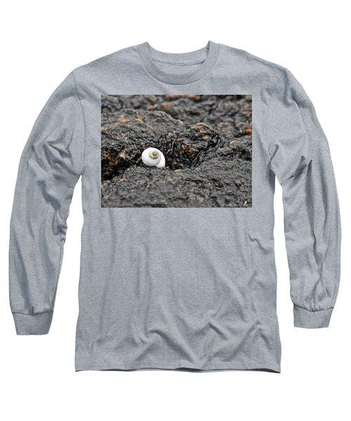 Lone Seashell Long Sleeve T-Shirt