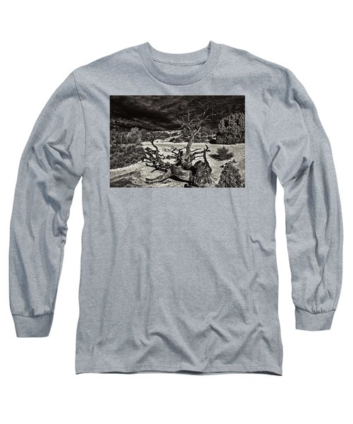 Lonely Tree #4  Long Sleeve T-Shirt by Alex Galkin