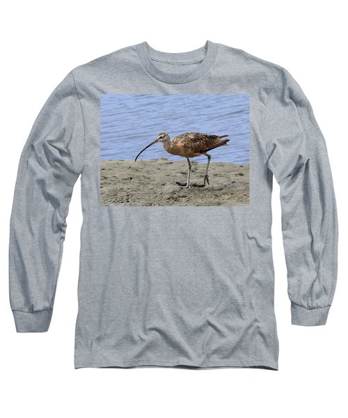 Long-billed Curlew Long Sleeve T-Shirt