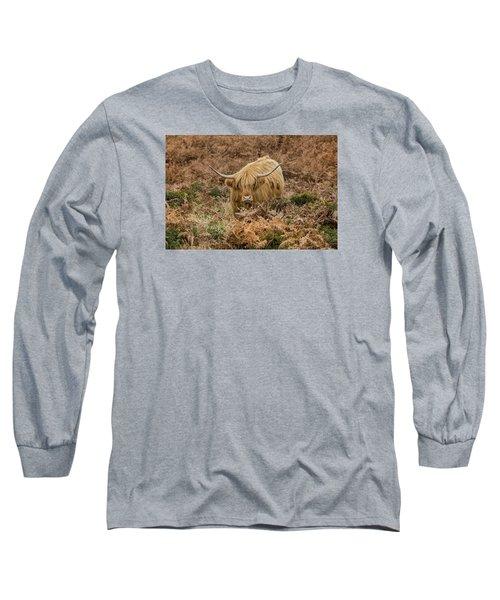 Longhorn On Dartmoor Long Sleeve T-Shirt