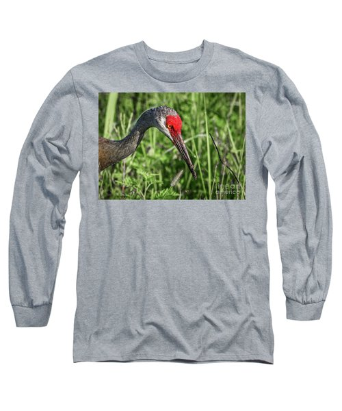 Look Down Crane Long Sleeve T-Shirt