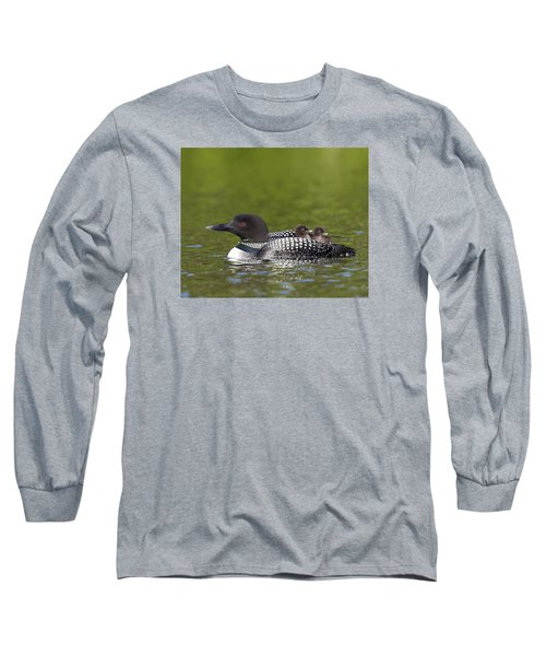Loon Taxi Long Sleeve T-Shirt by John Vose