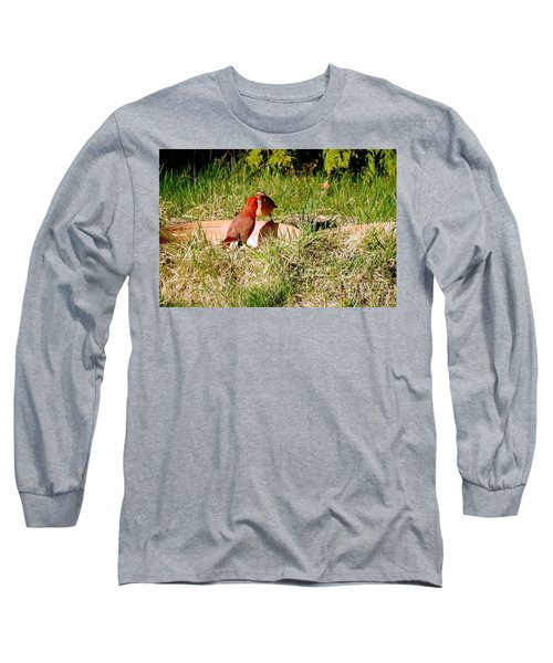 Long Sleeve T-Shirt featuring the photograph Lovers by Vicky Tarcau