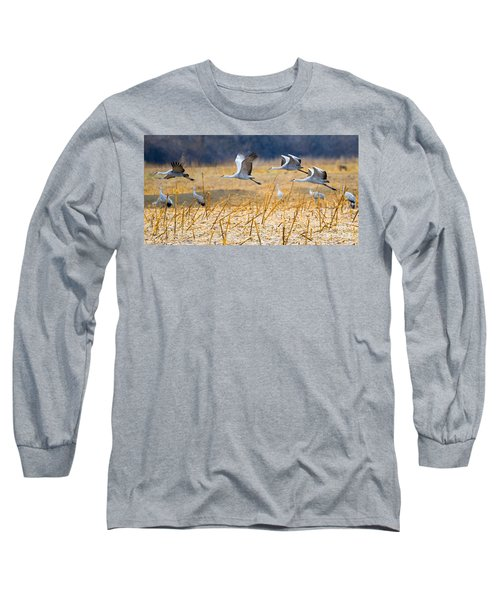 Low Level Flyby Long Sleeve T-Shirt