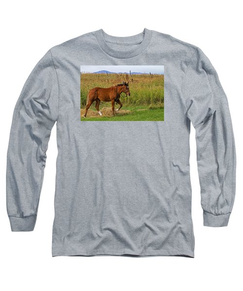 Lunch Break Long Sleeve T-Shirt