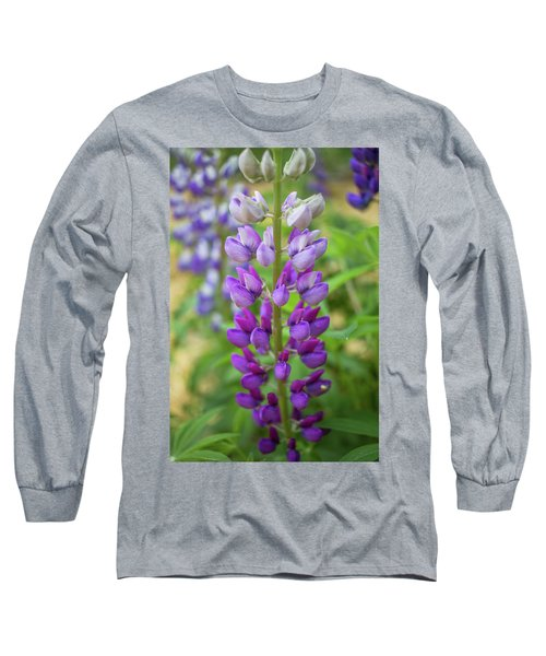 Long Sleeve T-Shirt featuring the photograph Lupine Blossom by Robert Clifford