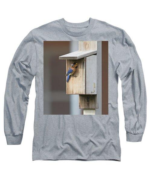 Male Bluebird And Babies Long Sleeve T-Shirt