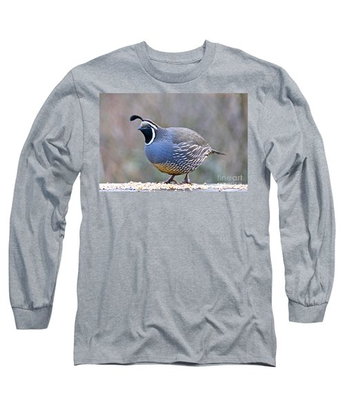 Long Sleeve T-Shirt featuring the photograph Male California Quail by Sean Griffin