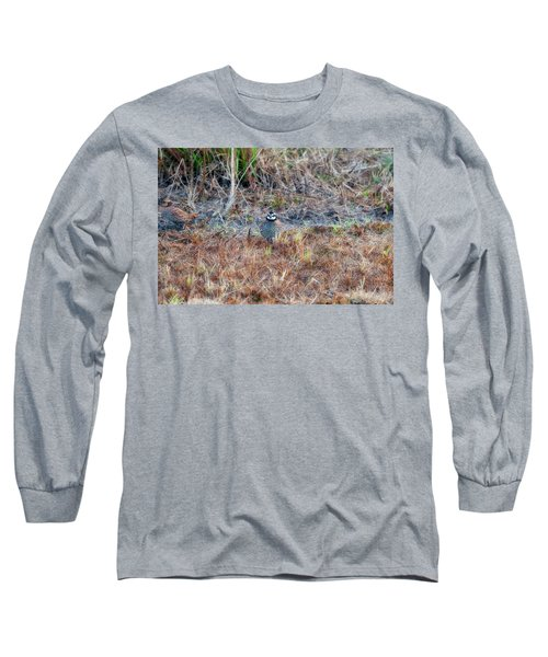 Male Quail In Field Long Sleeve T-Shirt