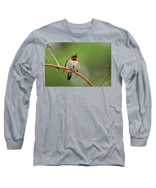 Male Ruby Throated Hummingbird Long Sleeve T-Shirt