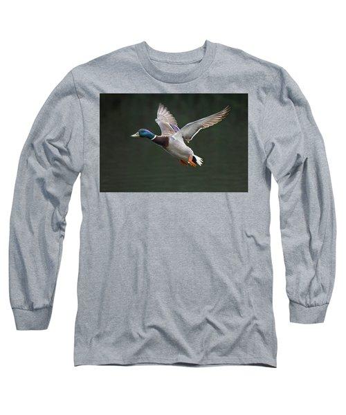Mallard Drake In Flight Long Sleeve T-Shirt