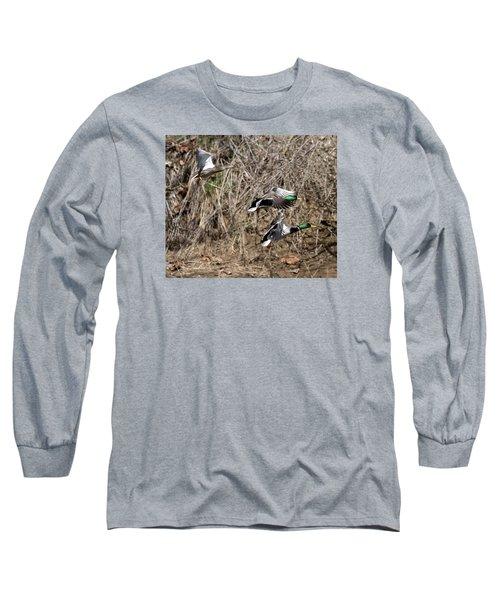 Mallard Ducks 2 Long Sleeve T-Shirt by David Lester