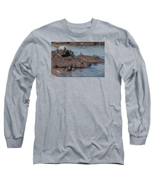 Marine Iguanas And Sealion Pup At Punta Espinoza Fernandina Island Galapagos Islands Long Sleeve T-Shirt