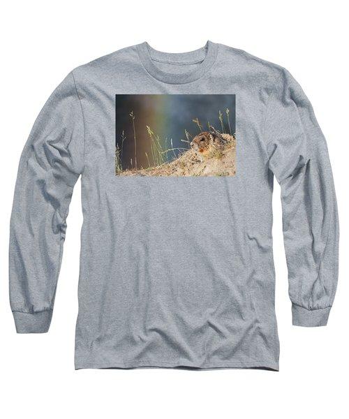 Marmot And Rainbow Long Sleeve T-Shirt