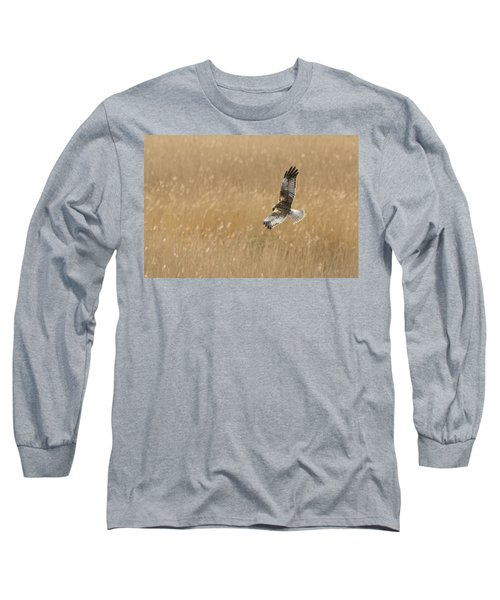 Marsh Harrier Long Sleeve T-Shirt