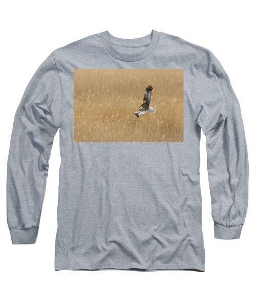 Marsh Harrier Long Sleeve T-Shirt