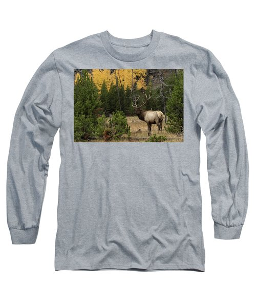 Master Long Sleeve T-Shirt