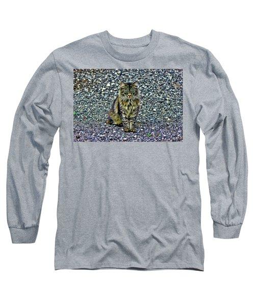 Mattie The Main Coon Cat Long Sleeve T-Shirt