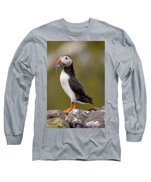 May Puffin Long Sleeve T-Shirt