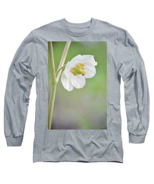 Mayapple Flower Long Sleeve T-Shirt by JD Grimes