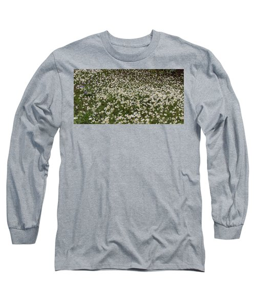 Long Sleeve T-Shirt featuring the photograph Meadow Of Daisey Wildflowers Panorama by James BO Insogna