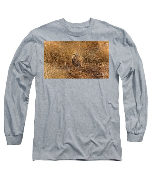 Meadowlark Hiding In Grass Long Sleeve T-Shirt by Robert Frederick