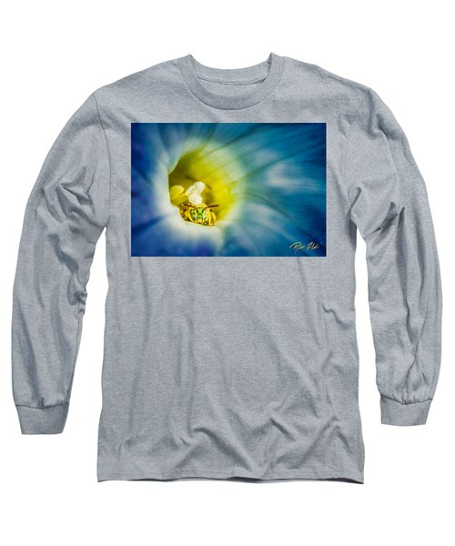 Metallic Green Bee In Blue Morning Glory Long Sleeve T-Shirt