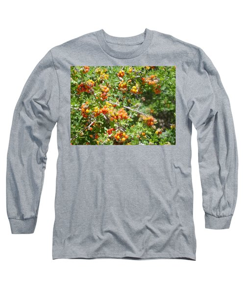 Miniature Fruit Balls Long Sleeve T-Shirt