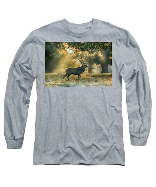 Long Sleeve T-Shirt featuring the photograph Misty Walk by Scott Carruthers