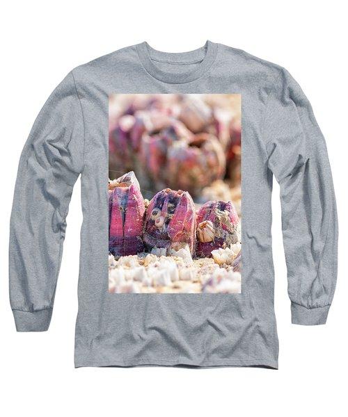 More Barnacles Long Sleeve T-Shirt