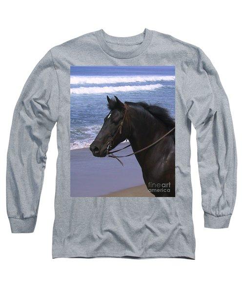 Morgan Head Horse On Beach Long Sleeve T-Shirt