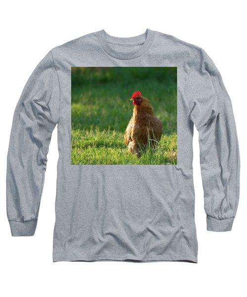 Morning Chicken Long Sleeve T-Shirt