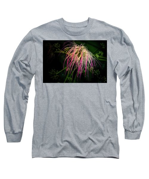 Morning Dew Long Sleeve T-Shirt